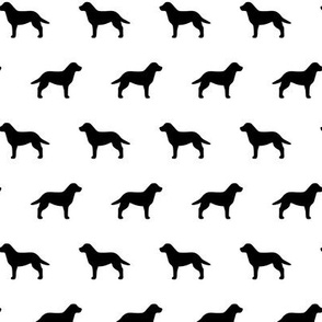Labrador Retriever Black on White