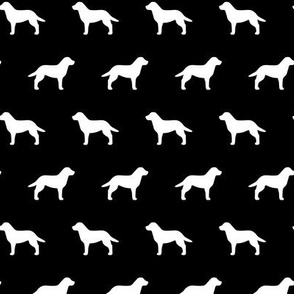 Labrador Retriever White on Black