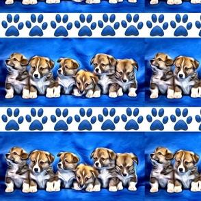 corgi puppies and pawprints