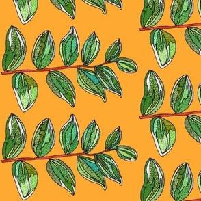 branch in orange