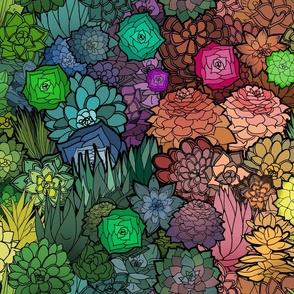 Succulent Rainbow (medium sized scale)