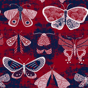 Butterflies and Moths by Mount Vic and Me