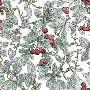 Winterberry Sketch