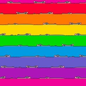 """I-Spy Hippo! 1"""" bright rainbow stripes"""