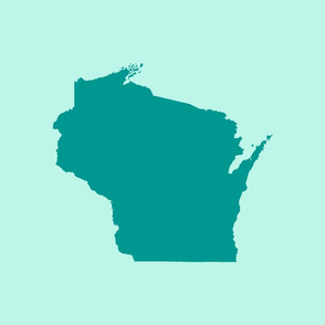 "Wisconsin silhouette - 18"" teal on mint blue"