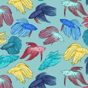 Watercolor Betta Fish on Light Blue