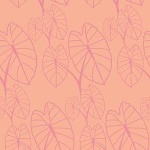 Lo'i love Pink on Peach