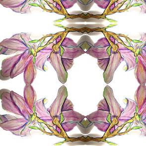 Watercolour magnolia