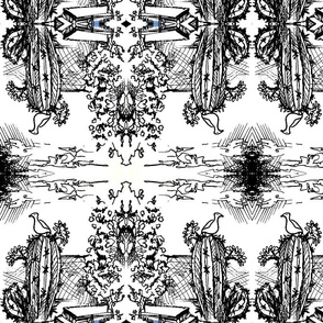 b/w cactus sketch