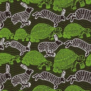 Slow Tortoise, Leaping Hare