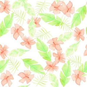 Hawaii flowers watercolor