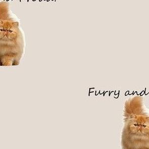 furry catunderwear panel