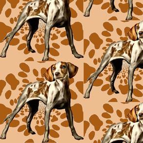 American Fox Hound fabric