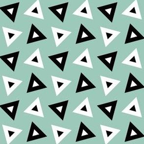 07233496 : triangle 4g : avian