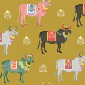 Nandi Bulls