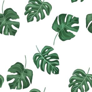 Monstera Leaf / Tropical Leaf/Hand painted tropical leaf/Foliage fabric