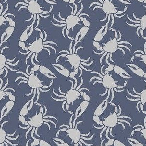 small crab gray on blue