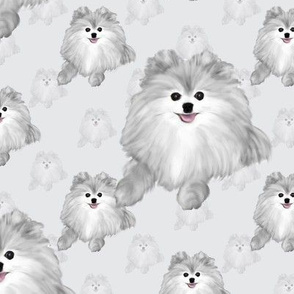 Pomeranian - Shades Grey  4""