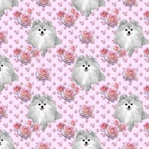 """Pomeranian & Roses 1 1/2"""""""