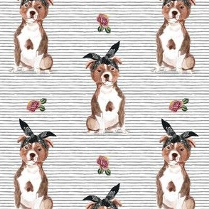 """4"""" Pit Life - Red Pitbull - Grey Stripes Floral"""