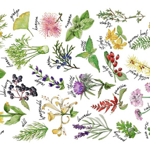 Plants and Herbs Alphabet tea towel