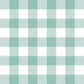 buffalo plaid 2in faded teal and white