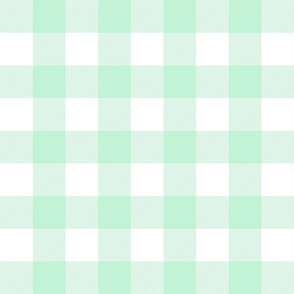 buffalo plaid 2in ice mint green and white