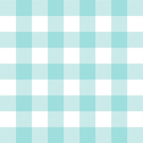 buffalo plaid 2in light teal and white #9EDFDD
