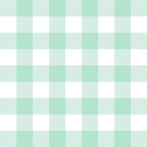 buffalo plaid 2in mint green and white
