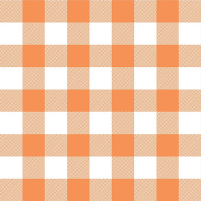buffalo plaid 2in tangerine and white