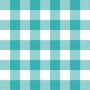 buffalo plaid 2in teal and white