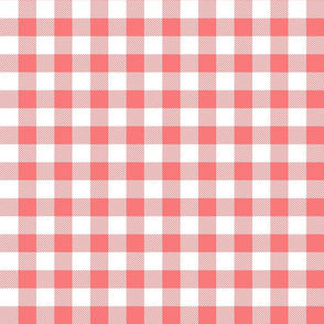 buffalo plaid 1in coral and white
