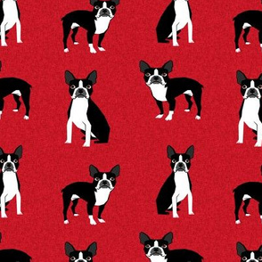 Boston terrier dog fabric - Pet Quilt A - red