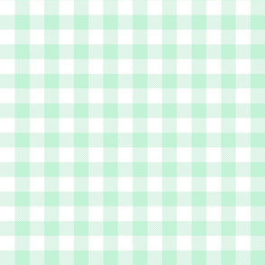 buffalo plaid 1in ice mint green and white