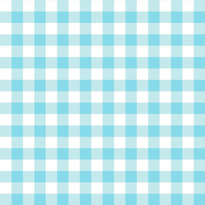 buffalo plaid 1in sky blue and white
