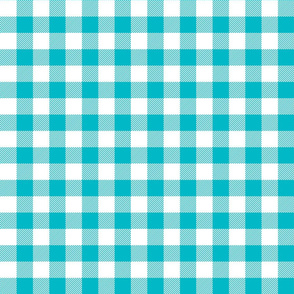 buffalo plaid 1in surfer blue and white