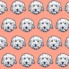 Goldendoodles in pink! Fun Doodle dog faces