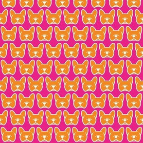 Frenchies in pink and orange! Fun French Bulldog fabric!