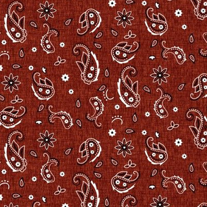 Western Paisley small - classic