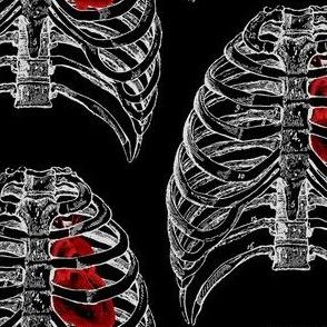 Vintage Anatomy Ribcage & Heart