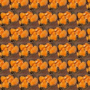Orange_cups_craquelure