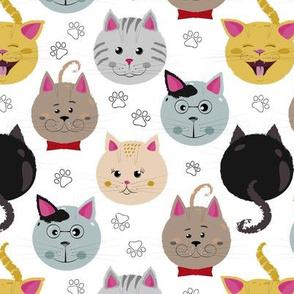 Cat`s family