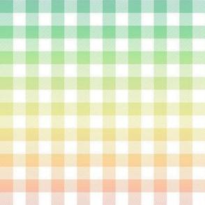 "pastel rainbow gingham, 1/2"""