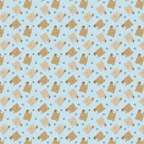 Micro tiny Wheaten Terriers - blue