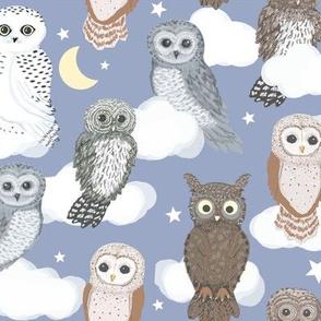 Owls Tree At Night