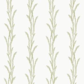 Seaweed Lines - Green, N White
