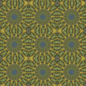 Peacock Kaleidoscope #2