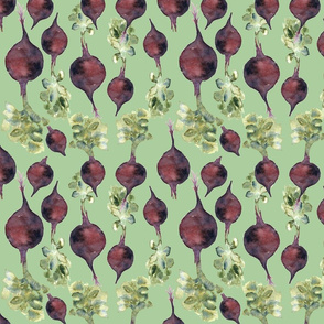 Beetroot family in green
