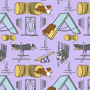 Simple Border Collie agility dogs A - purple