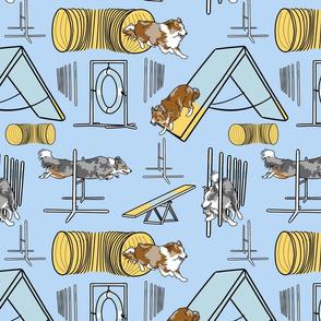 Simple Border Collie agility dogs B - blue